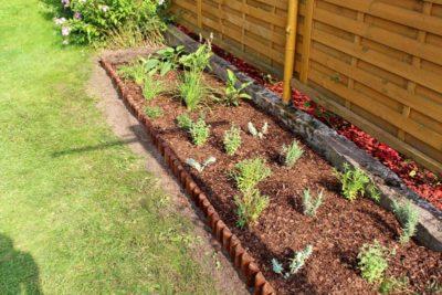 jak-sadzić-gardenbox-18