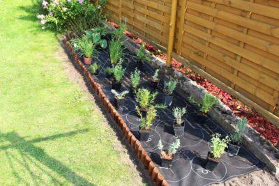 jak-sadzić-gardenbox-6