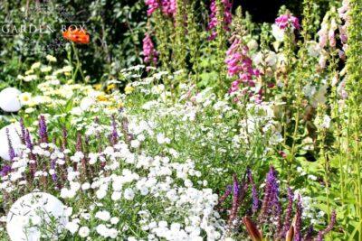 jak-sadzić-ogród-polski-9